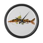 Tiger Shovelnose Catfish (Audreys Amazon River) La