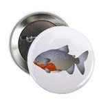 "Red Belly Piranha 2.25"" Button (10 pack)"