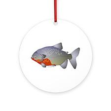 red belly piranha Ornament (Round)