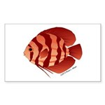 Discusfish (Discus) fish Sticker (Rectangle 10 pk)