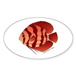 Discusfish (Discus) fish Sticker (Oval 50 pk)