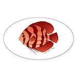 Discusfish (Discus) fish Sticker (Oval 10 pk)