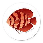 Discusfish (Discus) fish Round Car Magnet