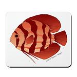 Discusfish (Discus) fish Mousepad