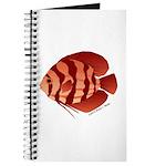 Discusfish (Discus) fish Journal