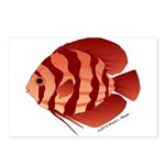 Discusfish (Discus) fish Postcards (Package of 8)