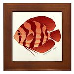 Discusfish (Discus) fish Framed Tile