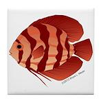 Discusfish (Discus) fish Tile Coaster