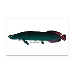 Arapaima (from Audreys Amazon River) Rectangle Car