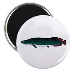 Arapaima (from Audreys Amazon River) Magnet