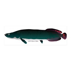 Arapaima (from Audreys Amazon River) Wall Decal