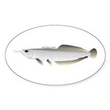 Arowana (from Audreys Amazon River) Sticker (Oval)
