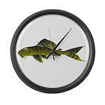 Suckermouth Catfish Pleico (Audreys Amazon River)