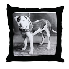Websters Joker, a famous Colby bred dog Throw Pill