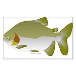 Pacu fish Sticker (Rectangle 50 pk)