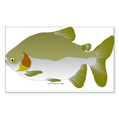 Pacu fish Sticker (Rectangle 10 pk)
