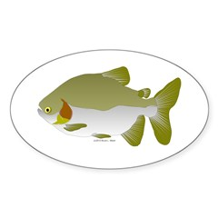 Pacu fish Sticker (Oval 10 pk)