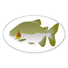 Pacu fish Sticker (Oval)