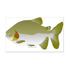Pacu fish Rectangle Car Magnet