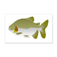 Pacu fish Wall Decal