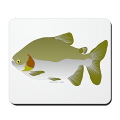Pacu fish Mousepad