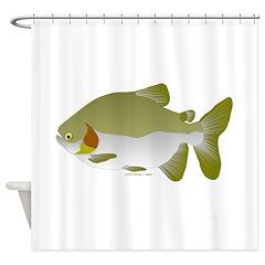 Pacu fish Shower Curtain