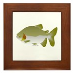 Pacu fish Framed Tile