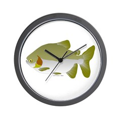 Pacu fish Wall Clock