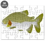 Pacu fish Puzzle