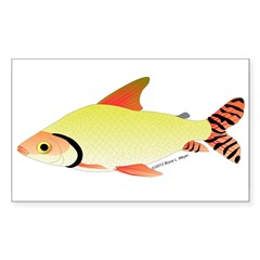 prochilodus (from Audreys Amazon River) Decal