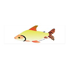 prochilodus (from Audreys Amazon River) Wall Decal
