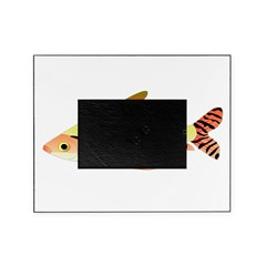 prochilodus (from Audreys Amazon River) Picture Frame