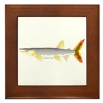 Bicuda (from Audreys Amazon River) Framed Tile