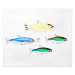 Four Tetras (Amazon River tropical fish) King Duve