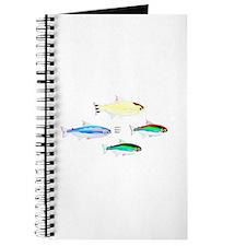 Four Tetras (Amazon River tropical fish) Journal