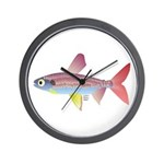Watermelon fish (Amazon River) Wall Clock