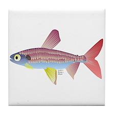 Watermelon fish (Amazon River) Tile Coaster
