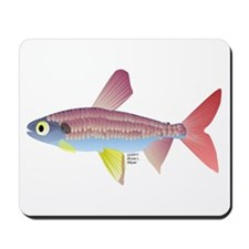Watermelon fish (Amazon River) Mousepad