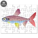 Watermelon fish (Amazon River) Puzzle