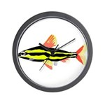 Striped Headstander fish Amazon tropical Wall Cloc