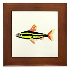 Striped Headstander fish Amazon tropical Framed Ti