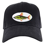 Striped Headstander fish Amazon tropical Black Cap