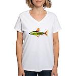 Striped Headstander fish Amazon tropical Women's V