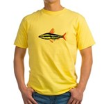 Striped Headstander fish Amazon tropical Yellow T-
