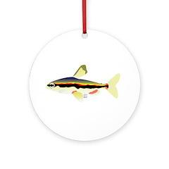 Golden Pencilfish tropical fish Amazon Ornament (R