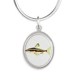 Golden Pencilfish tropical fish Amazon Silver Oval