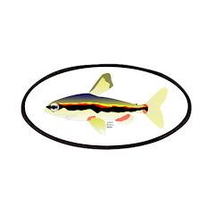 Golden Pencilfish tropical fish Amazon Patches