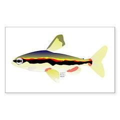 Golden Pencilfish tropical fish Amazon Decal