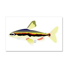 Golden Pencilfish tropical fish Amazon Car Magnet