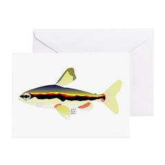 Golden Pencilfish tropical fish Amazon Greeting Ca